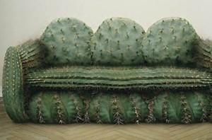 divano-cactus-600